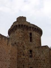 Château de la Madeleine (ruines) - Tour ronde du château de la Madeleine à Chevreuse.