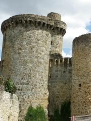 Château de la Madeleine (ruines) - Château fortifié construction débutée en 1030 et achevée en 1060 il domine la Haute Vallée de Chevreuse ( Yvelines 78 )