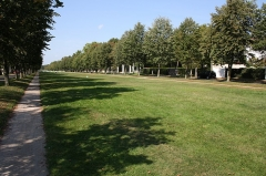 Parc - English: Albine avenue in the park of Maisons-Laffitte, France.