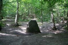 Menhir dit La Pierre-aux-Moines - English: Menhir de la Pierre aux Moines (Friars Stone) in the woods of Meudon, close to Paris