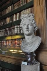 Palais de l'Institut (ancien collège des Quatre-Nations) - English: Interior of Bibliothèque Mazarine located in the 6th arrondissement of Paris in France.