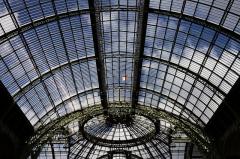 Grand Palais -  Vue du grand Palais lors de la vente Bonhams 2013.
