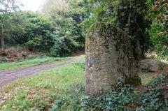 Menhir dit de la Touche-Bude, ou Fuseau de Margot - Français:  Menhir de la Touche-Bude, ou fuseau de Margot, à Plédran (France).