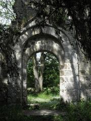 Ancienne église Saint-André - Ancienne église de Saint-André-des-Eaux (22). Porte de la costale méridionale de la nef.