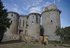 Ruines du château de Tonquédec - Château de Tonquédec dans les Côtes d'Armor (22): court extérieure