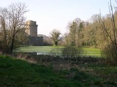 Ruines du château de Tonquédec - Ruines du château de Tonquédec - Tonquédec - France