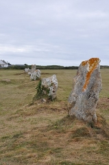 Alignements mégalithiques du Toulinguet - English: Megalithic stone alignment of Lagatjar in  Camaret-sur-Mer in the department of Finistère in Brittany, France.