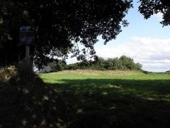 Tumulus dit Tossen-ar-C'honifled - Français:   Le tertre des Lapins. Tumulus sis près de Kérugou en Lanmeur (29).