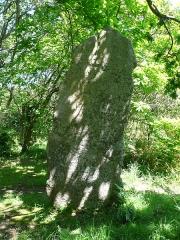 Trois menhirs de Kerfland et bande de terrain autour - Français:   Deuxième menhir de l\'alignement de Kerfland en Plomeur, Finistère, Bretagne, France.