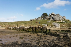 Allée couverte -  L'allée couverte de Guinirvit à Plouescat dans le Finistère. Elle a la particularité d'être couverte à marée haute et accessible à marée basse.