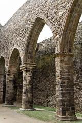 Ruines de l'abbaye Saint-Mathieu -  L'abbaye Saint-Mathieu de Fine-Terre