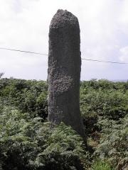 Alignement de Traonigou - Français:   Un des menhirs de l\'alignement de Traonigou en Porspoder (29).
