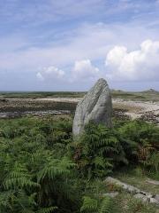 Cromlech Pors-an-Toullou et Ar-Verret - Français:   Détail du cromlech Pors-an-Toullou et Ar-Verret de la presqu\'île Saint-Laurent en Porspoder (29).