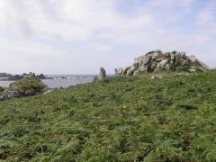 Cromlech Pors-an-Toullou et Ar-Verret - Français:   Cromlech Pors-an-Toullou et Ar-Verret de la presqu\'île Saint-Laurent en Porspoder (29).