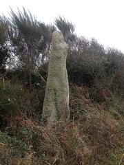 Menhir de Calès -  Menhir de Calès - Porspoder