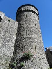 Château - Château de Fougères (35). Tour du Hallay.
