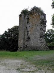 Restes du Vieux-Château - Français:   Château d\'Hédé (35).