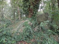 Allée couverte de Four-es-Feins - Français:   Allée couverte de Four-ès-Feins, commune de Miniac-Morvan (35).