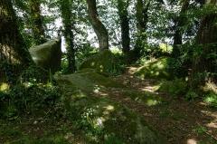 Deux mégalithes - Français:  Les roches du diable: menhir couché à Miniac-sous-Bécherel (France).