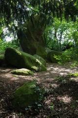 Deux mégalithes - Français:  Les roches du diable: menhir dressé à Miniac-sous-Bécherel (France).