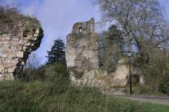 Château - English: Saint-Aubin-du-Cormier, ruins of castle