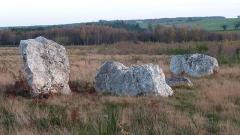 Ensemble mégalithique dénommé alignements de Cojoux - English:  West stone row of Moulin's (Mill's) alignments in the Landes de Cojoux (Cojoux's moorland) , Saint-Just, Brittany, France.