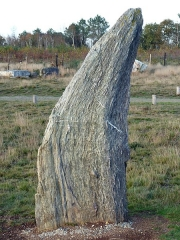 Ensemble mégalithique dénommé alignements de Cojoux - English:  One of the Menhir from the south stone row of Moulin's (Mill's) alignments in the Landes de Cojoux (Cojoux's moorland) , Saint-Just, Brittany, France.