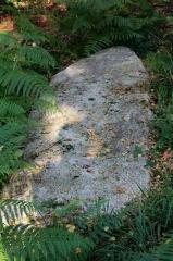 Alignement de menhirs dans la forêt domaniale de Floranges - Alignement de Kornevec