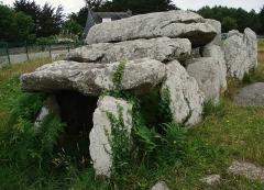 Alignement et dolmen de Kermario -  Carnac,les alignements de Kermario, le dolmen.Vue de trois-quarts de face.