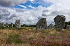 Alignement et dolmen de Kermario - Alignement de Kermario