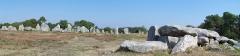 Alignement et dolmen de Kermario - Alignements et dolmen de Kermario, Carnac, Pays de Vannes, Bretagne