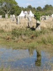 Alignement et dolmen de Kermario - Alignement de Kermario avec reflet dans l'eau