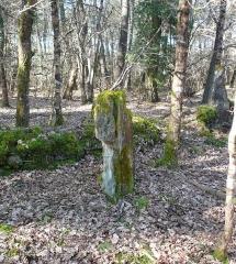 Restes de cromlech - Français:   Menhirs, vestiges du cromlech nord de Kerlescan, commune de Carnac, Morbihan, Bretagne, France.