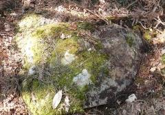 Restes de cromlech - Français:   Menhir couché, vestiges du cromlech nord de Kerlescan, commune de Carnac, Morbihan, Bretagne, France.
