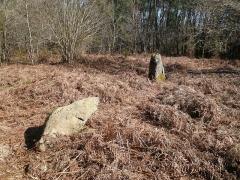 Restes de cromlech - Français:   Alignement de menhirs, vestiges du cromlech nord de Kerlescan, commune de Carnac, Morbihan, Bretagne, France.