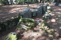 Allée couverte coudée avec la base de son tumulus circulaire - Allée couverte de Luffang Tal-er-Roch à Crach en France.