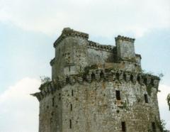 Ancienne forteresse ou ancien château de Largouët - Le haut du donjon