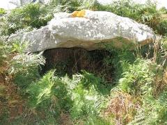 Dolmen à galerie avec les restes de son tumulus - Français:   Dolmen de Kerangré situé sur la commune d\'Erdeven