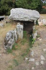 Dolmens de Mané-Bras dits Lann-Mané-Bras - Dolmen de Lann-Mané-Bras: vue du groupe nord