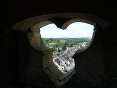 Eglise Notre-Dame-du-Roncier - Français:   Vue de Josselin depuis le haut de l\'escalier du clocher de la basilique