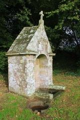 Fontaine Saint-Clair - Français:   Fontaine Saint-Clair (Réguiny): vue de coté avec vasque au premier plan où les gens viennent se laver les yeux (Saint-Clair est vénéré pour la guérison des yeux)