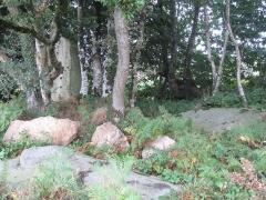 Menhir de Guernangoué - Français:   Ce menhir fait à l\'origine partie d\'un alignement de 3 rochers détruit en 1967. Aujourd\'hui 2 rochers sont au sol, dont un avec des inscriptions.