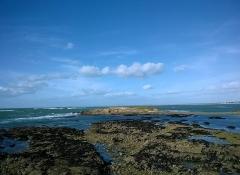 Ile Thinic -  Morbihan Saint-Pierre-Quiberon Portivy Ile Thinic 03022016
