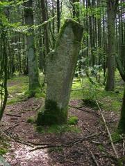 Deux menhirs taillés, dits Babouin et Babouine - Français:   Menhir dit Babouine, Trédion (France, Morbihan)