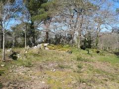 Trois dolmens à galerie de Mané-Kervilor - Français:   Vue d\'ensemble du complexe tumulaire de Mané-Kervilor, dit Mané-Bras. Commune de La Trinité-sur-Mer, Morbihan, Bretagne, France.