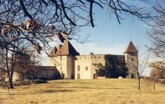 Château de la Roche - Français:   Château de La Roche (Inscrit Classé)