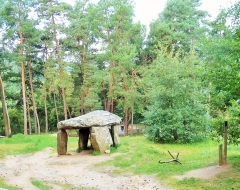 Dolmen du Parc - This building is indexed in the Base Mérimée, a database of architectural heritage maintained by the French Ministry of Culture,under the reference PA00092374 .