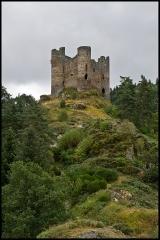 Restes du château fort - English: Ruins of Alleuze castle