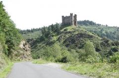Restes du château fort - Français:   Château d\'Alleuze