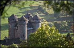 Domaine du château d'Anjony - English:   Anjony Castle, detail
